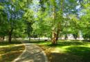 В Тереке реконструируют парк отдыха